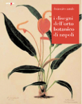 i disegni dell orto botanico di napoli domenico natale
